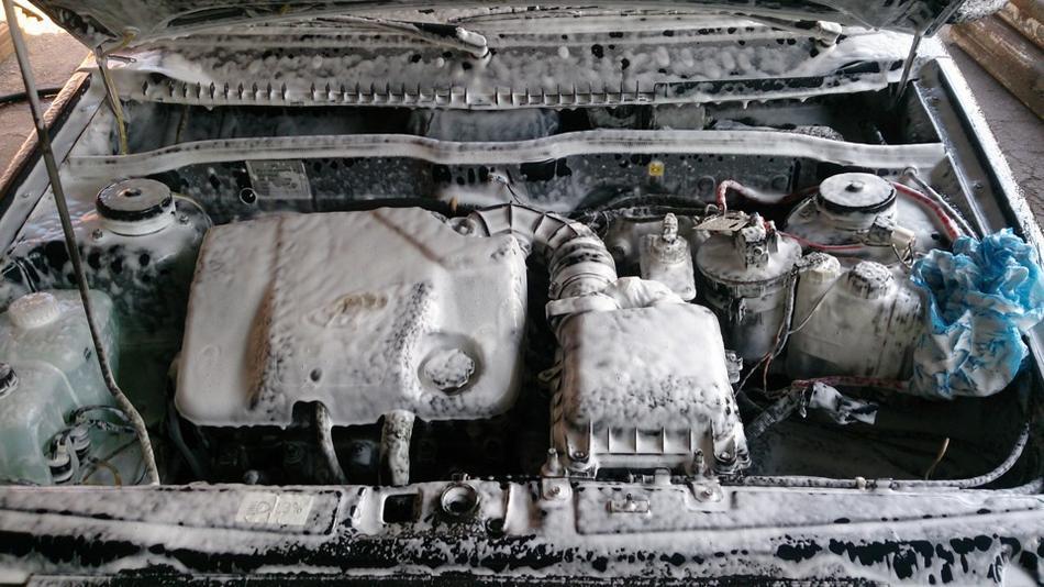 Нанесение чистящего средства на двигатель